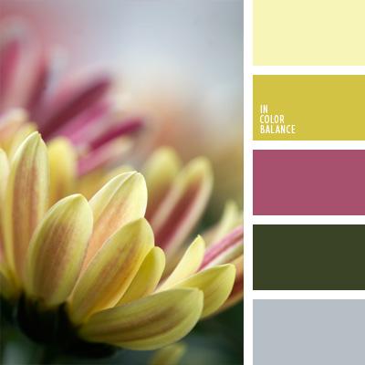 paleta-de-colores-100