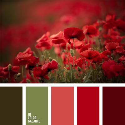 paleta-de-colores-103