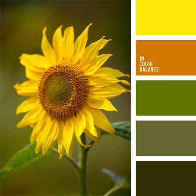 paleta-de-colores-110