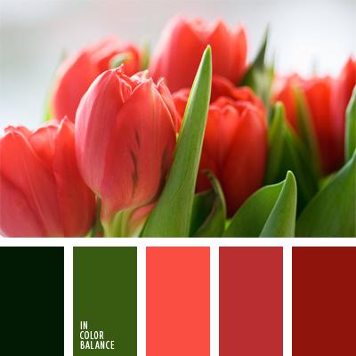 paleta-de-colores-134