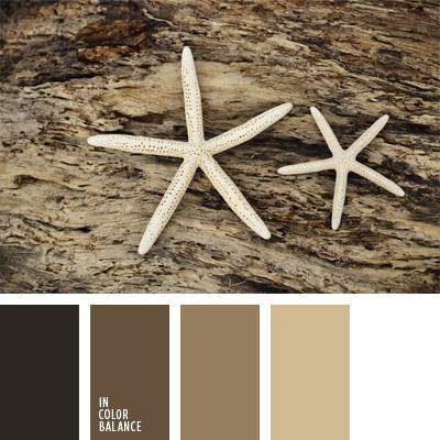 paleta-de-colores-156