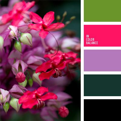 paleta-de-colores-158