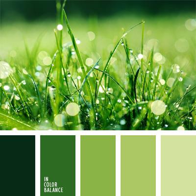 paleta-de-colores-164