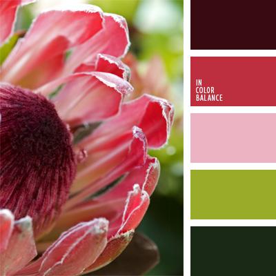 paleta-de-colores-170
