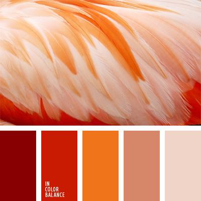 paleta-de-colores-174