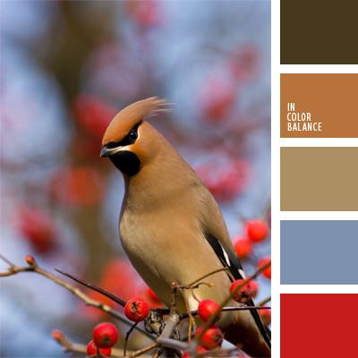 paleta-de-colores-178