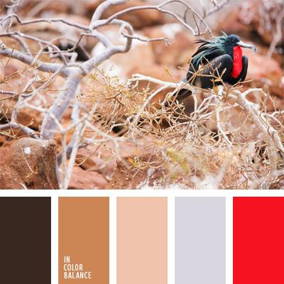 paleta-de-colores-182