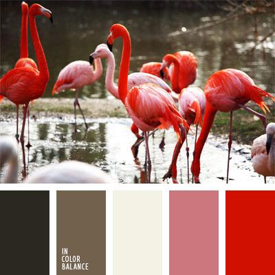 paleta-de-colores-21