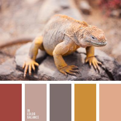 paleta-de-colores-212