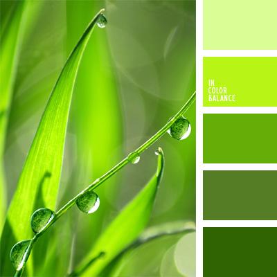 paleta-de-colores-215