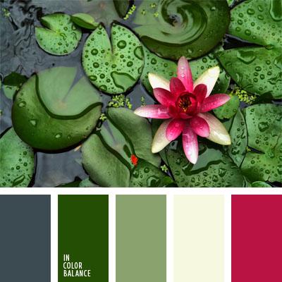 paleta-de-colores-22