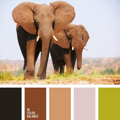 paleta-de-colores-220