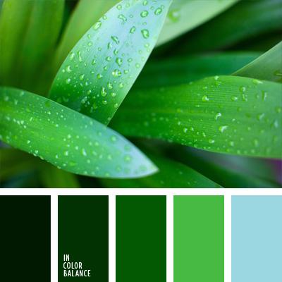 paleta-de-colores-224