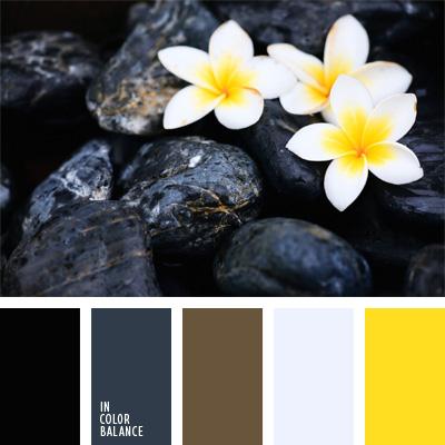 paleta-de-colores-233