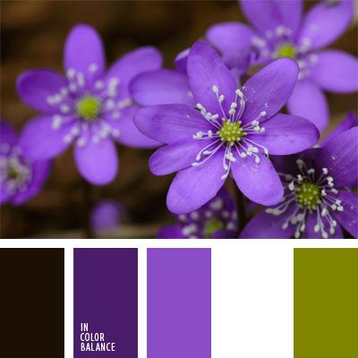 paleta-de-colores-238