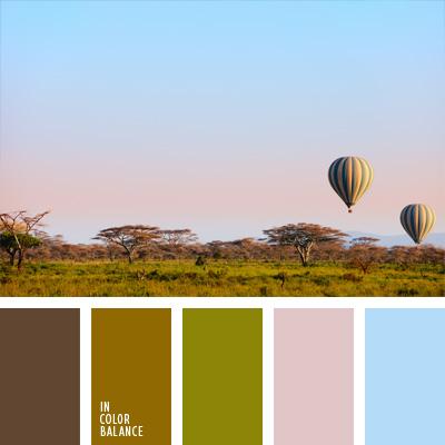 paleta-de-colores-244