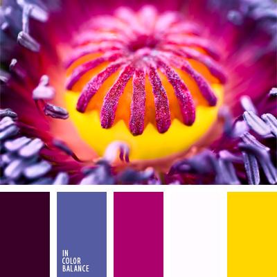 paleta-de-colores-25
