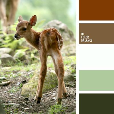 paleta-de-colores-255