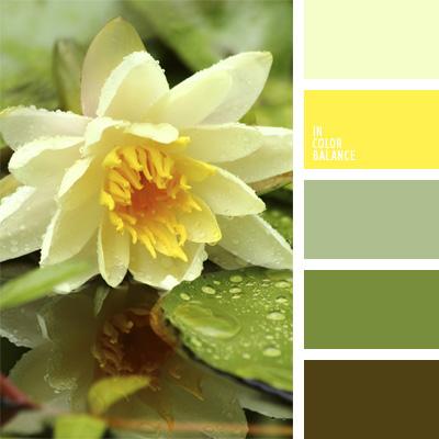 paleta-de-colores-26