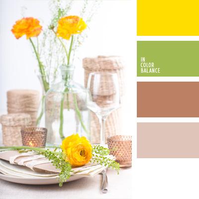 paleta-de-colores-270