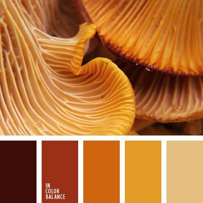 paleta-de-colores-281