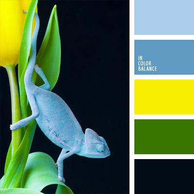 paleta-de-colores-284