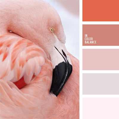 paleta-de-colores-288