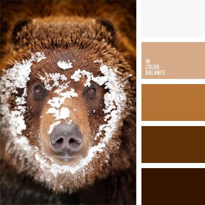 paleta-de-colores-29