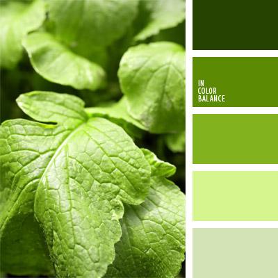 paleta-de-colores-292