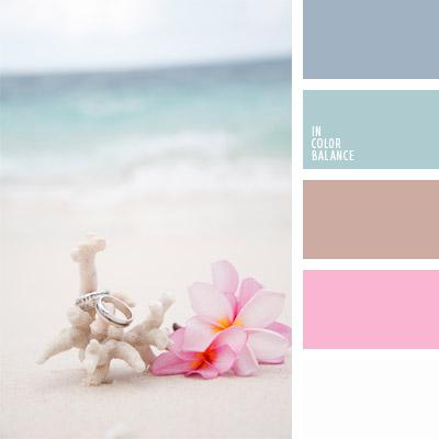 paleta-de-colores-293