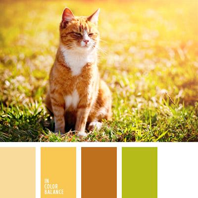 paleta-de-colores-295