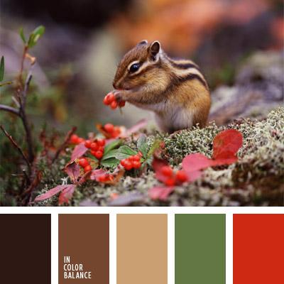 paleta-de-colores-297