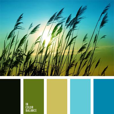 paleta-de-colores-36