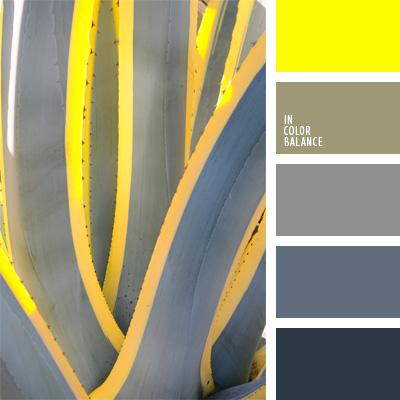 paleta-de-colores-38