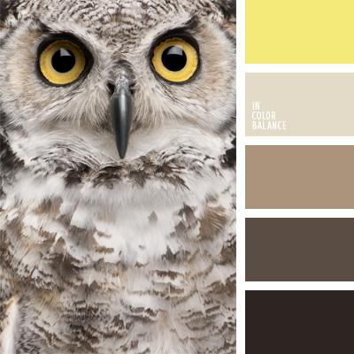paleta-de-colores-39