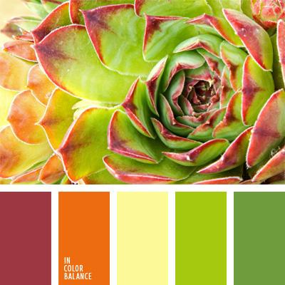 paleta-de-colores-40