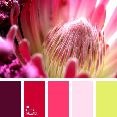 paleta-de-colores-43