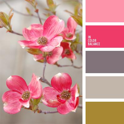 paleta-de-colores-51