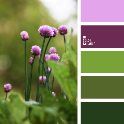 paleta-de-colores-56