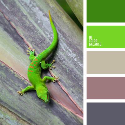 paleta-de-colores-61
