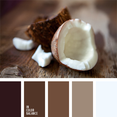 paleta-de-colores-65