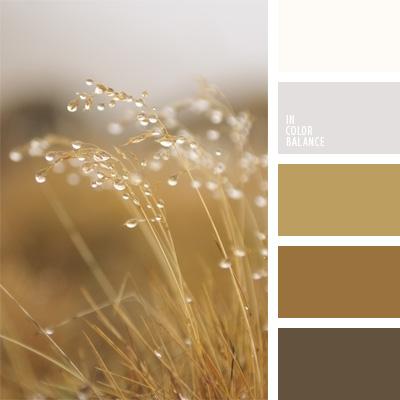 paleta-de-colores-67