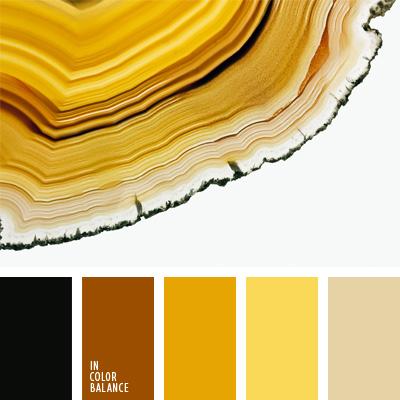 paleta-de-colores-70