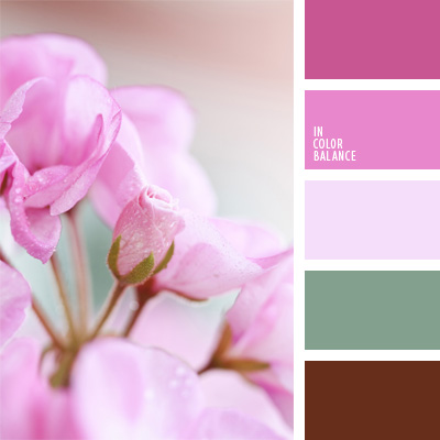 paleta-de-colores-71