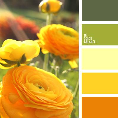 paleta-de-colores-72