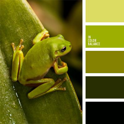 color verde rana | IN COLOR BALANCE