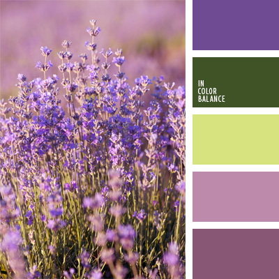 paleta-de-colores-79