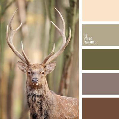 paleta-de-colores-81