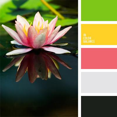 paleta-de-colores-82