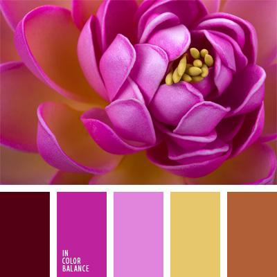 paleta-de-colores-84